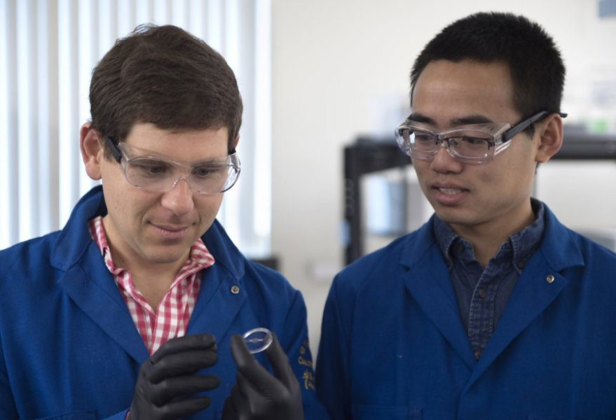 octopus camouflage inspires a new material