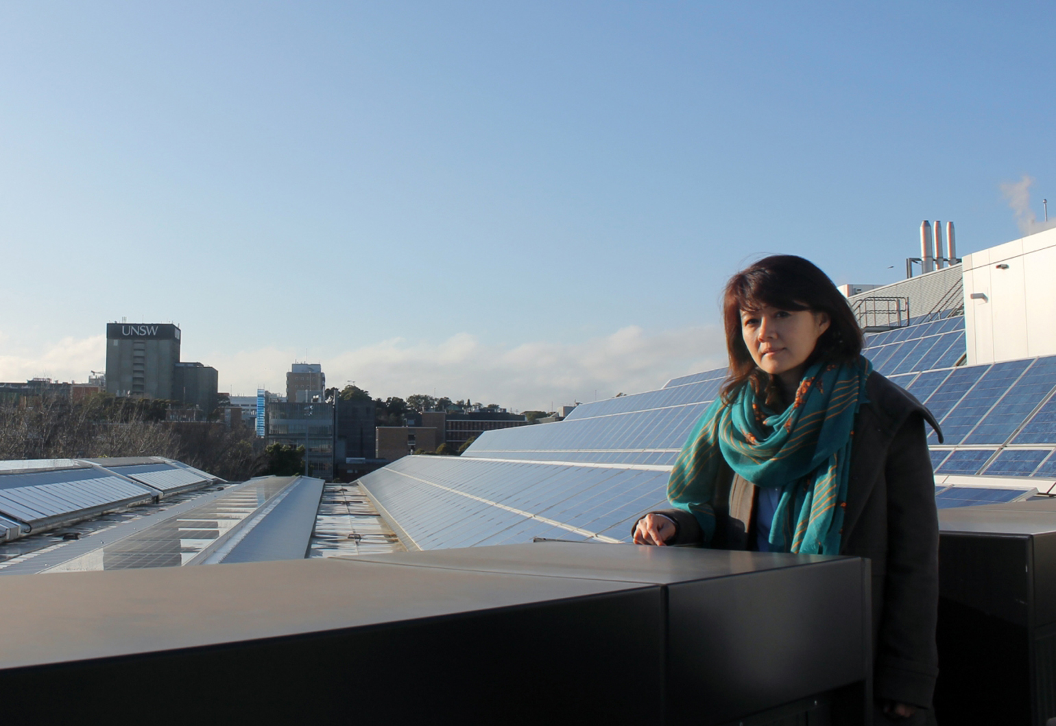 chemical engineer Rose Amal receives Companion to the Order of Australia