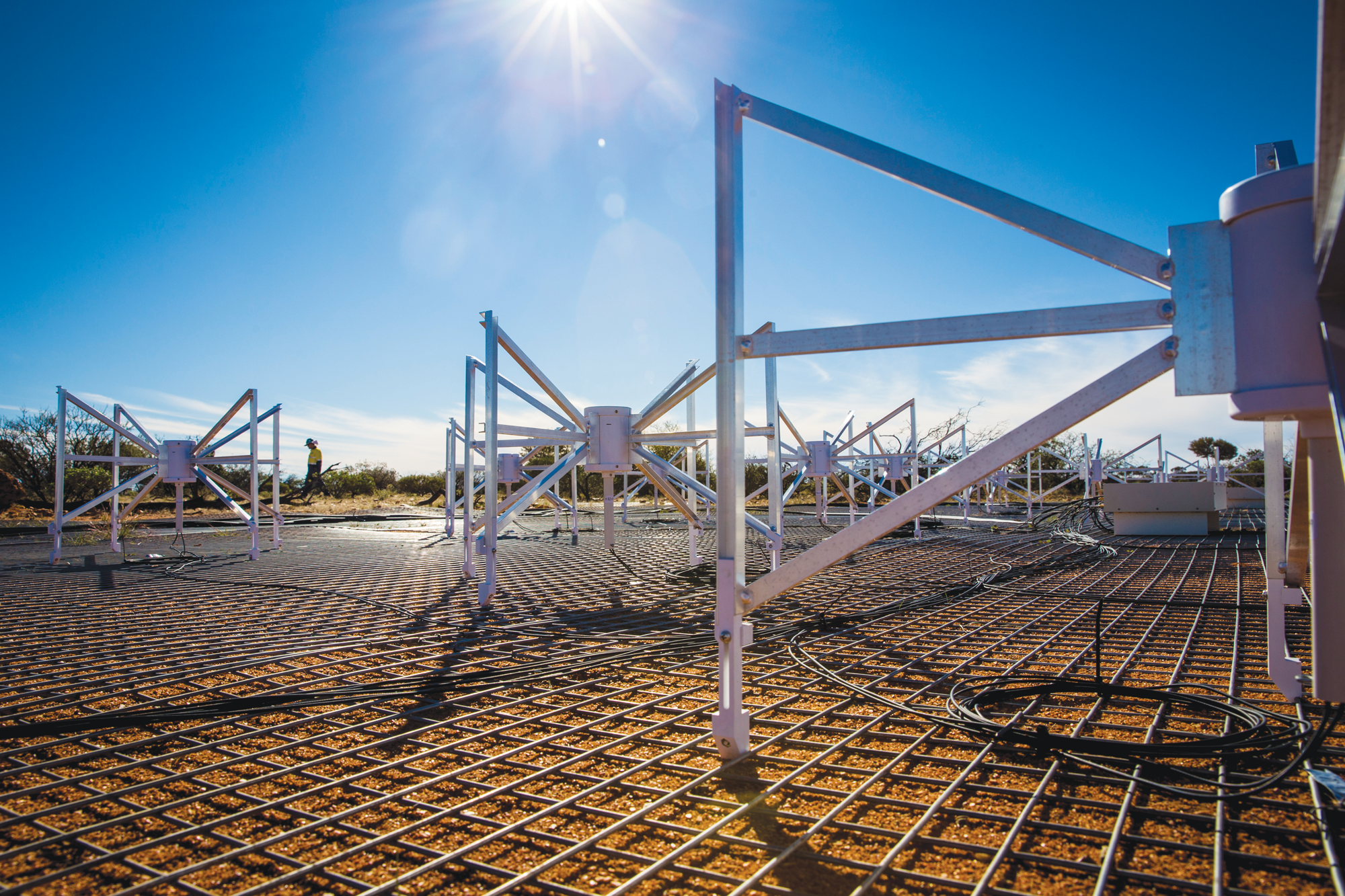 Dipoles at the Murchison Widefield Array