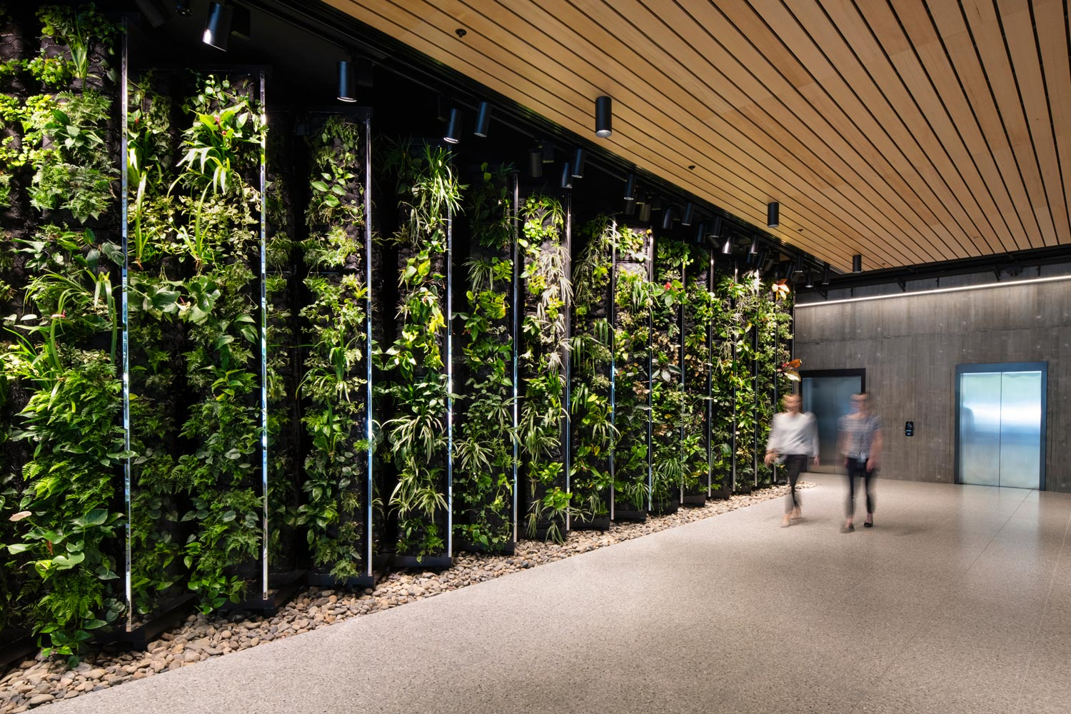 Wood-structures-green-wall-in-foyer