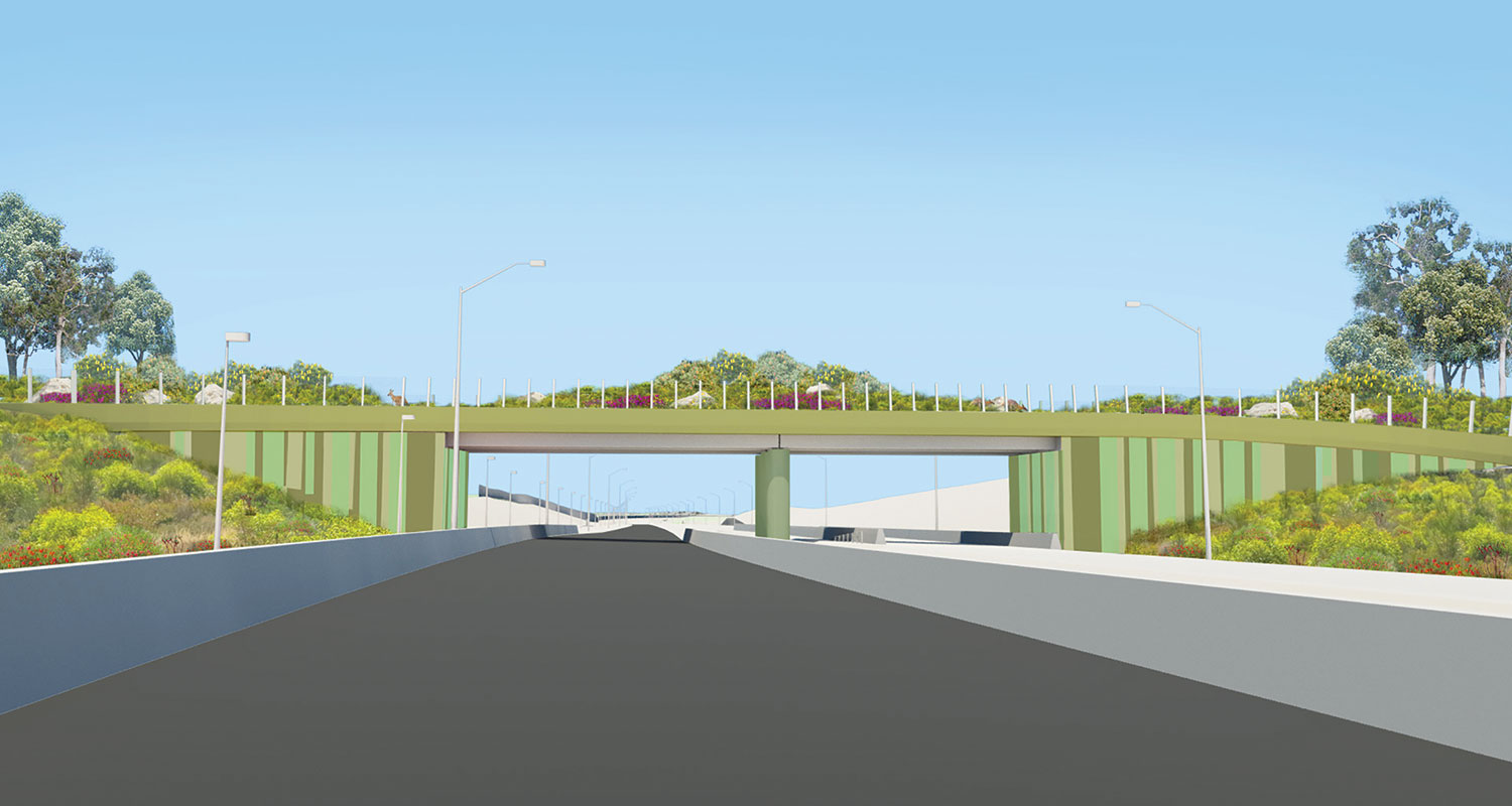 The concept for the project's fauna bridge.