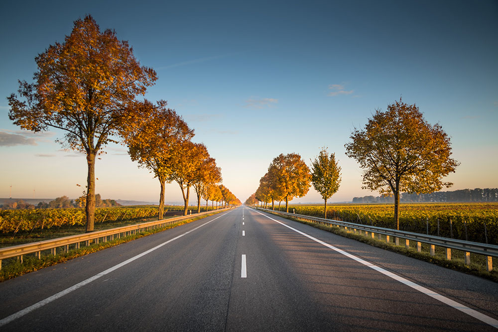 The SA Government is fast-tracking regional roads projects